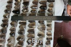 100 Pieces 8.6LB Natural Smokey Quartz Crystal Points Polished Healing Brazil