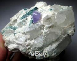1845 CT Purple Apatite With Paraiba Tourmaline Bunch & Quartz (Collection Piece)