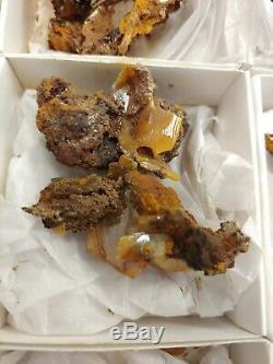 26 Piece Wulfenite Crystal Specimen Flat moroco