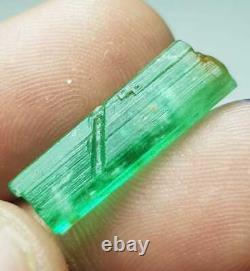 29.80 Carat 6 Pieces Top Quality Natural Emerald Crystal Lot From Panjshir
