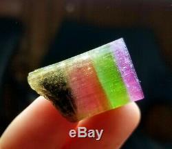 83 carats penta color tourmaline terminated rarest piece collectable 29×19 mm