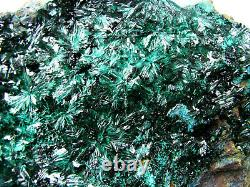 ATACAMITE BRILLIANT DEEP CRYSTALS with CHRYSOCOLLA from CHILE. MASTER PIECE