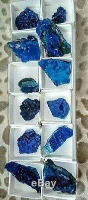 Azurite specimens flat of 12pieces