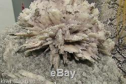 Beauty Flower of Pseudomorph Quartz 2.7Kgs = 6Lbs Unique Piece Free Shipping