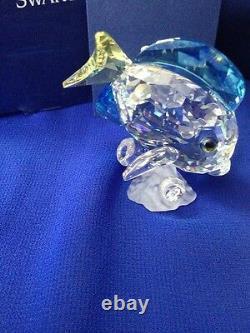 Blue Tang Fish, Colored, Trilogy Gift, Swarovski Crystal Member Piece #0886180