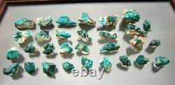 Decent Dioptase natural lot of 30 tiny pieces, Altyn Tube, Kazakhstan