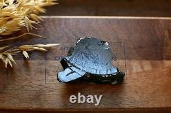 Elite Shungite Crystals BIG piece 155g \ 9.7oz