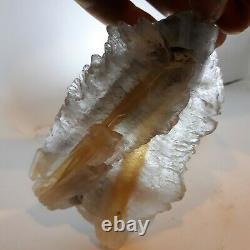 Golden fishtail selenite with rare coal 4lb. 5 collectors pieces