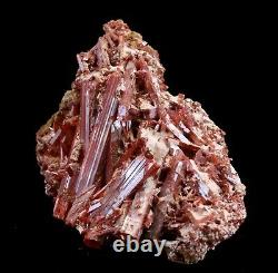 Gorgeous Crocoite Crystals on Matrix Red Lead Mine Old Piece Dundas Tasmania