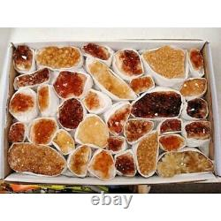 Lot Flat Citrine Crystal Geode Cluster Bulk Approx. 7.5 Lb (25 to 35 Pieces)