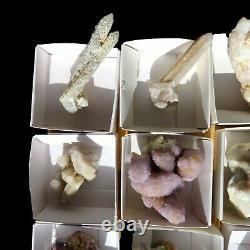 Lot of Cactus Spirit Quartz 12 pieces CCflat57