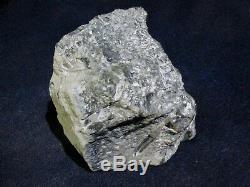 OLIVE NEPHRITE / JADE with QUARTZ CRYSTALS 2.3 LBS WYOMING ROUGH CUT PIECES