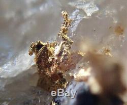 Or natif dans quartz La gardette Isère France. Pièce de 5 cm