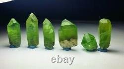 Peridot Crystals/ Specimens Lot (36 Pieces) from Supat Valley