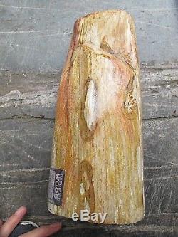 Petrified Wood Fossilised Piece Polished Indonesia 23x10x9 cms 3.779 kilos