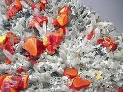REALGARS CRIMSON RED COLOR on QUARTZS CRYSTALS BED from PERU. MUSEUM PIECE