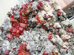 REALGAR CRIMSON RED, BRILLIANT PYRITE, SELENITE & QUARTZ fromPERU. MUSEUM PIECE