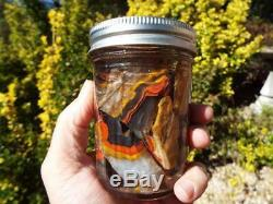 Red Yellow Black Kentucky Agate Pieces