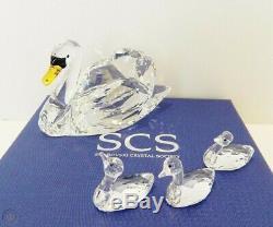 Retired Swans Scs Jubilee Edition Members Piece 2017 Swarovski Crystal 5233542