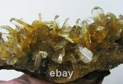 SELENITE TWIN GOLDEN CRYSTALS scattered on MATRIX from PERU. MASTER PIECE