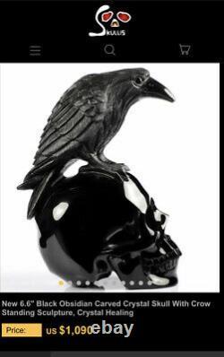Stunning Black Obsidian Carved Crow & Skull Raven Crystal 7inch Display Piece