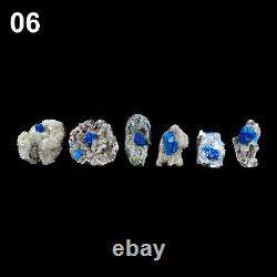 Superb Cavansite Crystals Natural Mineral Specimen (24 pieces Flat) # CA06