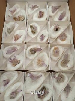 Veracruz Amethyst Flat With 24 Pieces