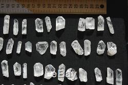 WHOLESALE Pink Danburite Crystals from Mexico 88 pieces 450 grams # 4007
