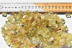 WHOLESALE Yellow Apatite Crystals from Mexico 175 pieces 450 grams # 4085