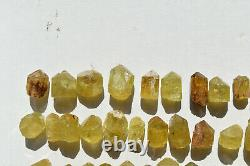 WHOLESALE Yellow Apatite Crystals from Mexico 60 pieces 450 grams # 4265