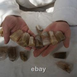 16 Pièces Cheveux D'or Naturel Rutile Quartz Crystal Point Tour Guérison Polie /