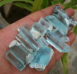 170 Grammes Top Aquamarine Terminated Beaucoup Cristal 19 Pièces De Shagir, Pakistan