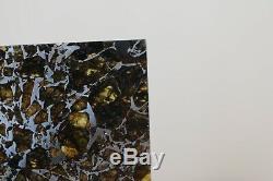 Admirez Cristaux D'olivine Translucides Tranche Gravées Météorites De Pièce De Musée Stable