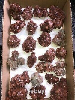 Aragonite Clusters Whole Flat- 25 Pièces Environ 3,8 KG Maroc Minéral
