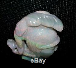 Carving Black Opal Queensland, 20cts Superbe Coloré Grand Morceau Naturel