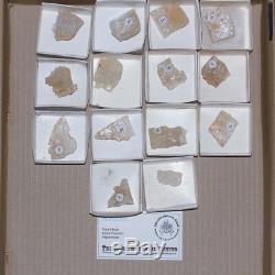 Coupes De Cristal En Gros 14pieces Gemmy Petalite Afghanistan @ $ 8 À La Vente