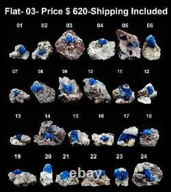Cristaux Bleus Cavansite Spécimen Minéral Naturel (24 Pièces Plat)