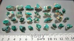 Dioptase Décent Lot Naturel De 30 Petits Morceaux, Altyn Tube, Kazakhstan