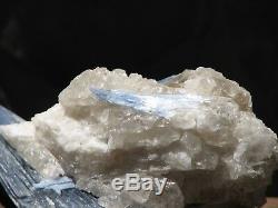 Formation De Cristal De Cyanite Impressionnante Dans Le Quartz Spécial Trouver Un Grand Morceau D'affichage