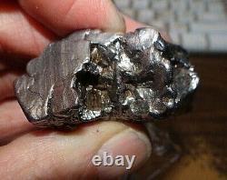 Huge 166 Gm Campo Del Cielo Météorite Crystal! Grand Taille De Grande Pièce Avec Stand