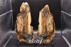 Huge Jawdropping Blue Mountain Jasper Pair Collectors Pièces! Miroir Polonais