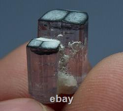 Natural Transparent Terminé Pink Tourmaline Crystal Lot (79 Carat, 14 Pièces)
