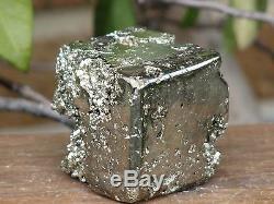 Pièce De Collectionneurs Avec Cristaux De Pyrite En Formation De Cubes Rare Et Unique