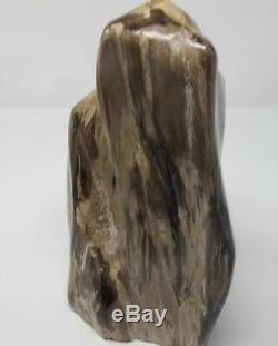 Pièce Fossilisée En Bois Pétrifié Polie, Indonésie 29x16x14 CM 6.7 KG De Fossile