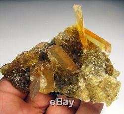 Selenite D'or Cristaux Et Halogénites Cubes Sur Matrix Du Pérou. Morceau Merveilleux