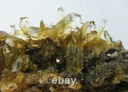 Selenite Twin Golden Crystals Éparpillés Sur Matrix Du Pérou. Pieces De Maître