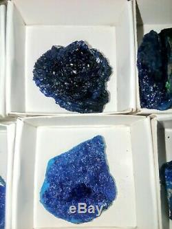 Spécimens Azurite Plat De 12pieces