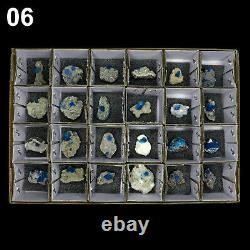 Superbes Cristaux Cavansite Natural Mineral Specimen (24 Pièces À Plat) # Ca06