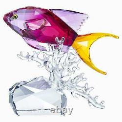 Swarovski Crystal Anthias Fish #5494699 Toute Nouvelle Belle Pièce
