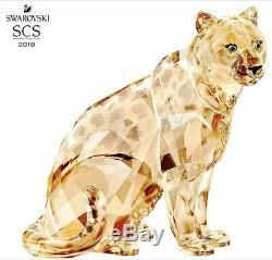 Swarovski Crystal Scs Édition Annuelle 2019 Amur Leopard Sofia Ltd. Pièce Signée